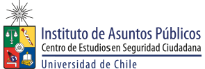 Instituto de Asuntos Públicos